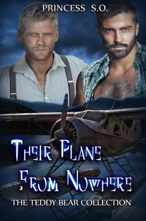 TheirPlaneFromNowhere reduced 500x700